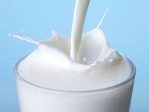 lapte-1
