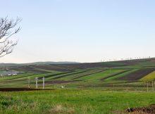 terenuri-agricole-instrainate