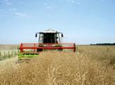 conditii-agricole_combina