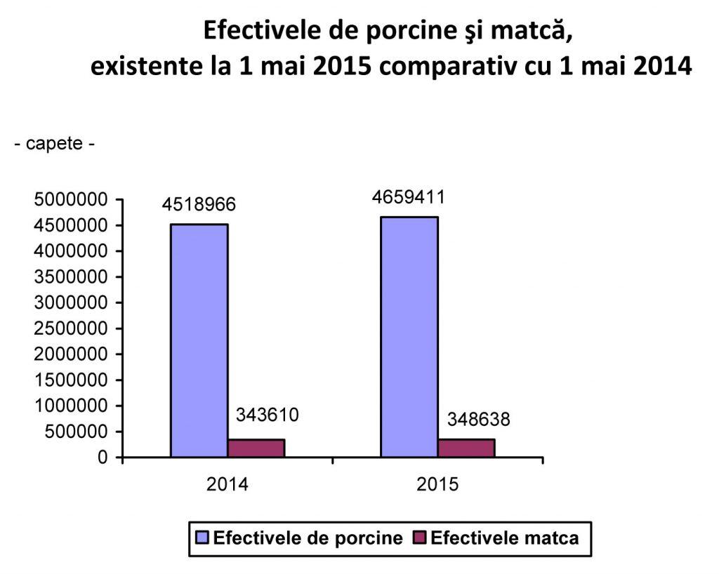 grafic-efective-porci-comparatie-2014-2015