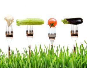 legume-ecologice